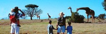Family Tour (Cape Town, Garden Route and Safari)