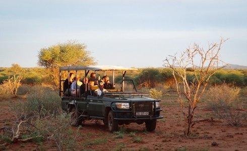 Madikwe and Sun City Self-drive Safari | Safari365
