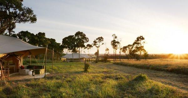 Tented Safari C&s of the Serengeti Tour & Mobile Tented Camps in Africa | Safari365