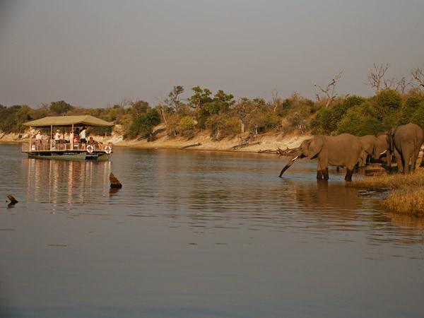 elephant country