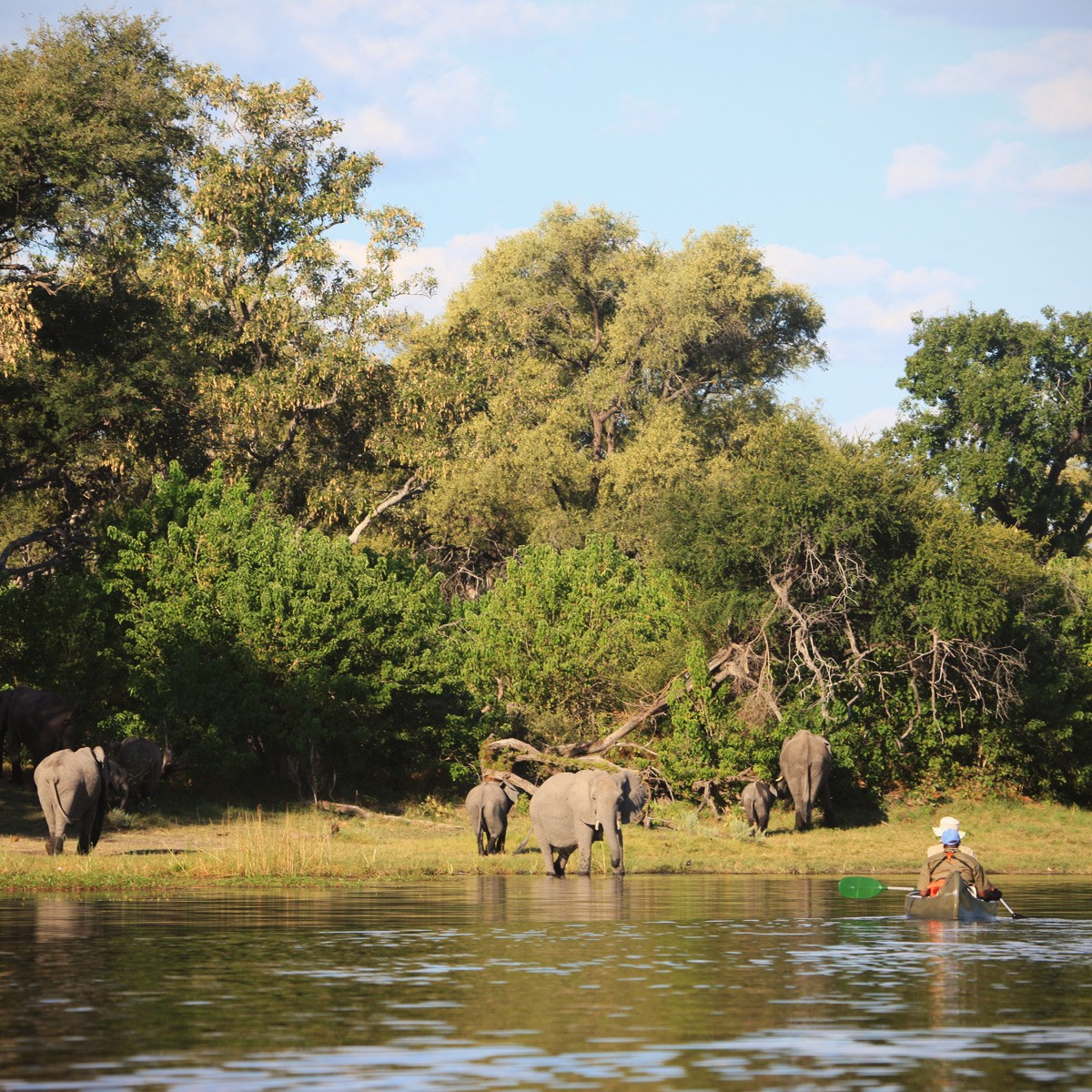 Lonely Planet places Botswana at Top