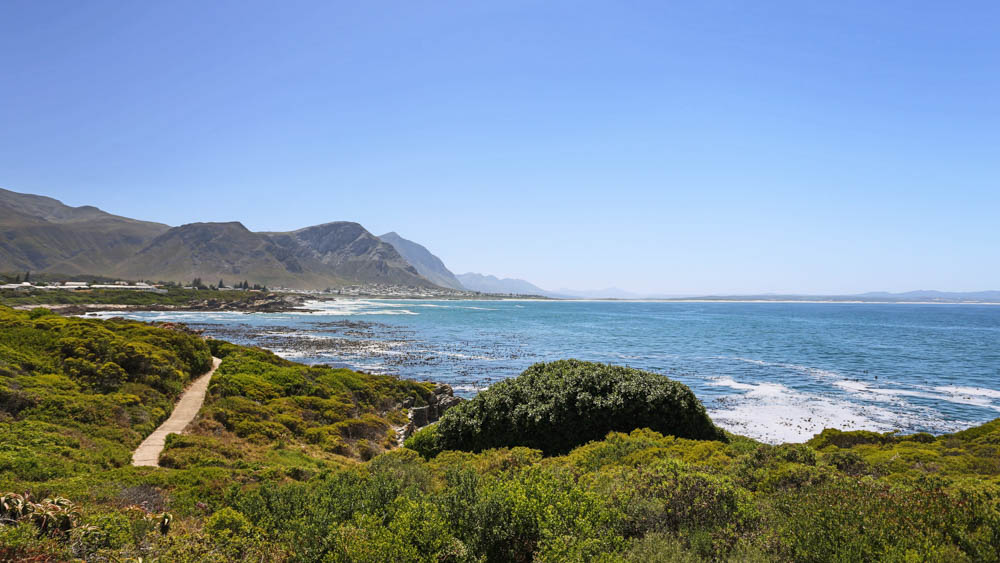 Hermanus Day Trip
