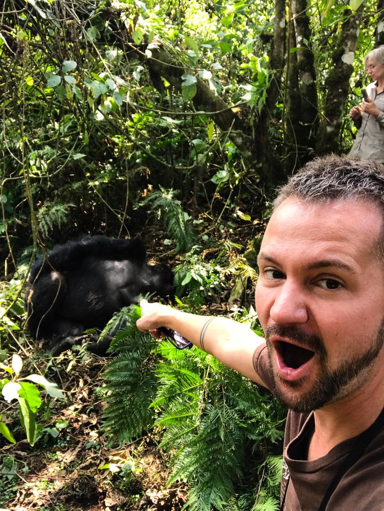 Review Rwanda Gorilla Trekking