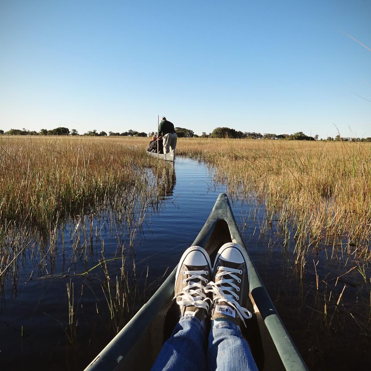 Okavango Detlta on a Mokoro