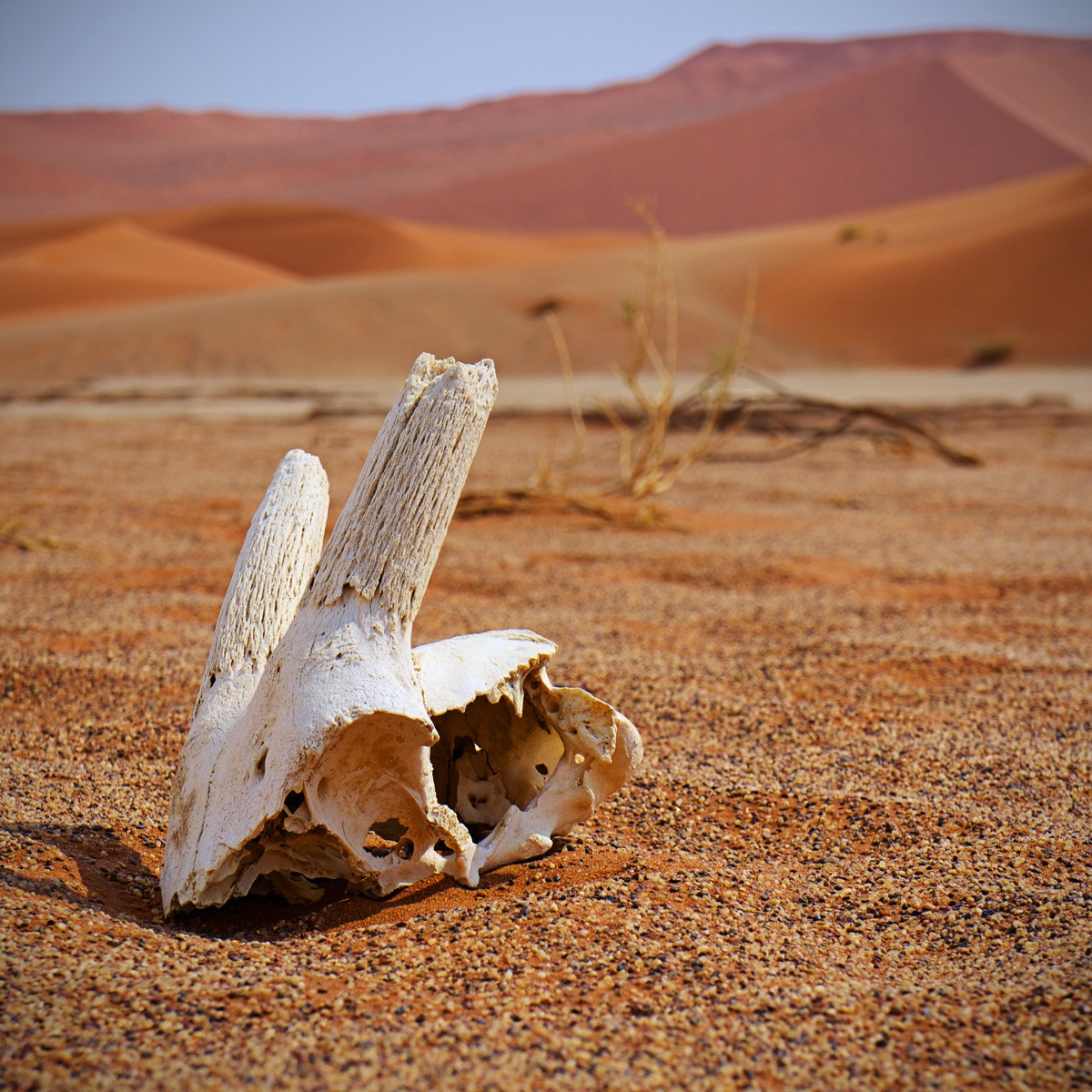 ghostly sites in Namibia