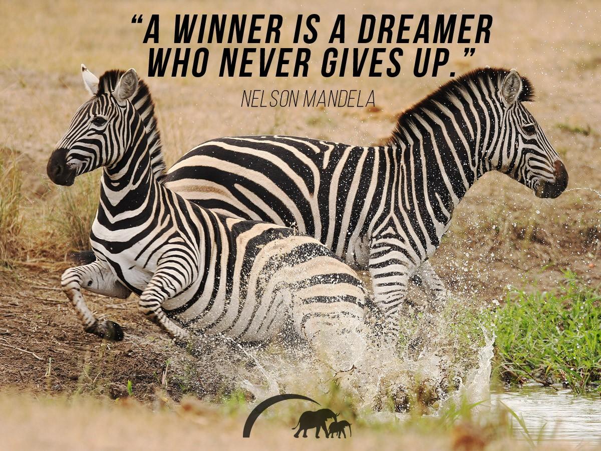 Nelson Mandela quotes 4
