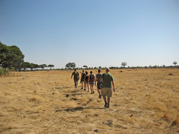 Zimbabwe safari guides