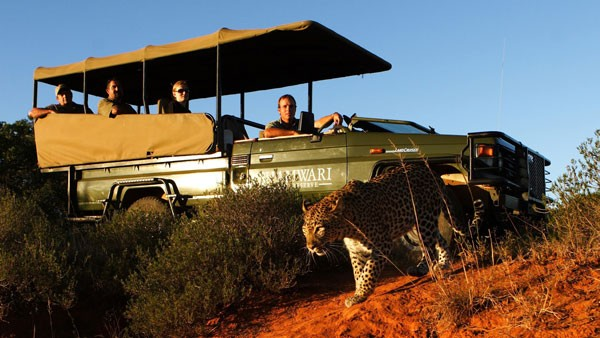 South Africa wins top safari destination