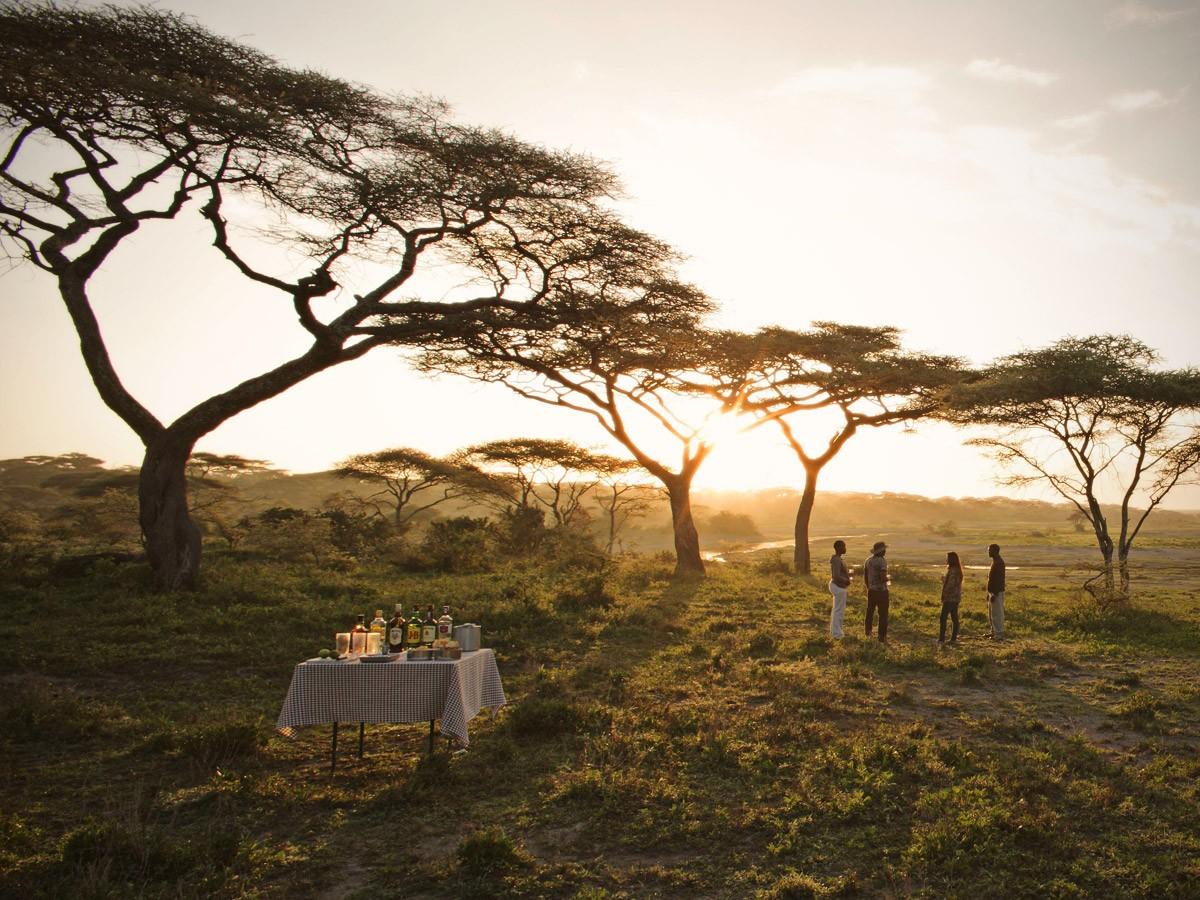 Top 5 destinos para viajar com a família na Tanzânia | Safari365 Brasil, Safari na Africa