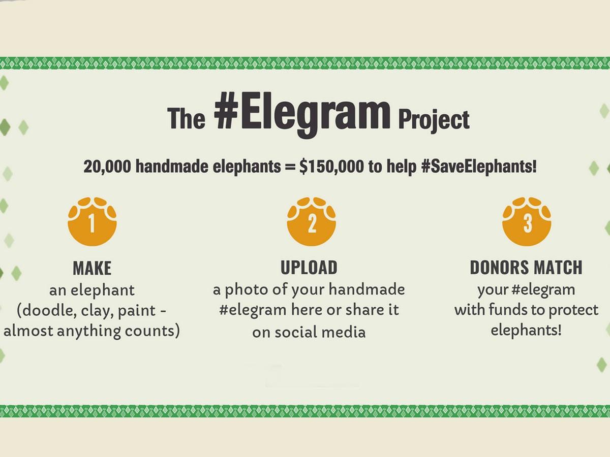 elegram project