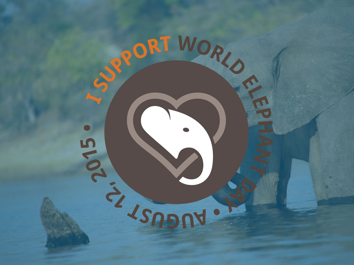 World Elephant Day event