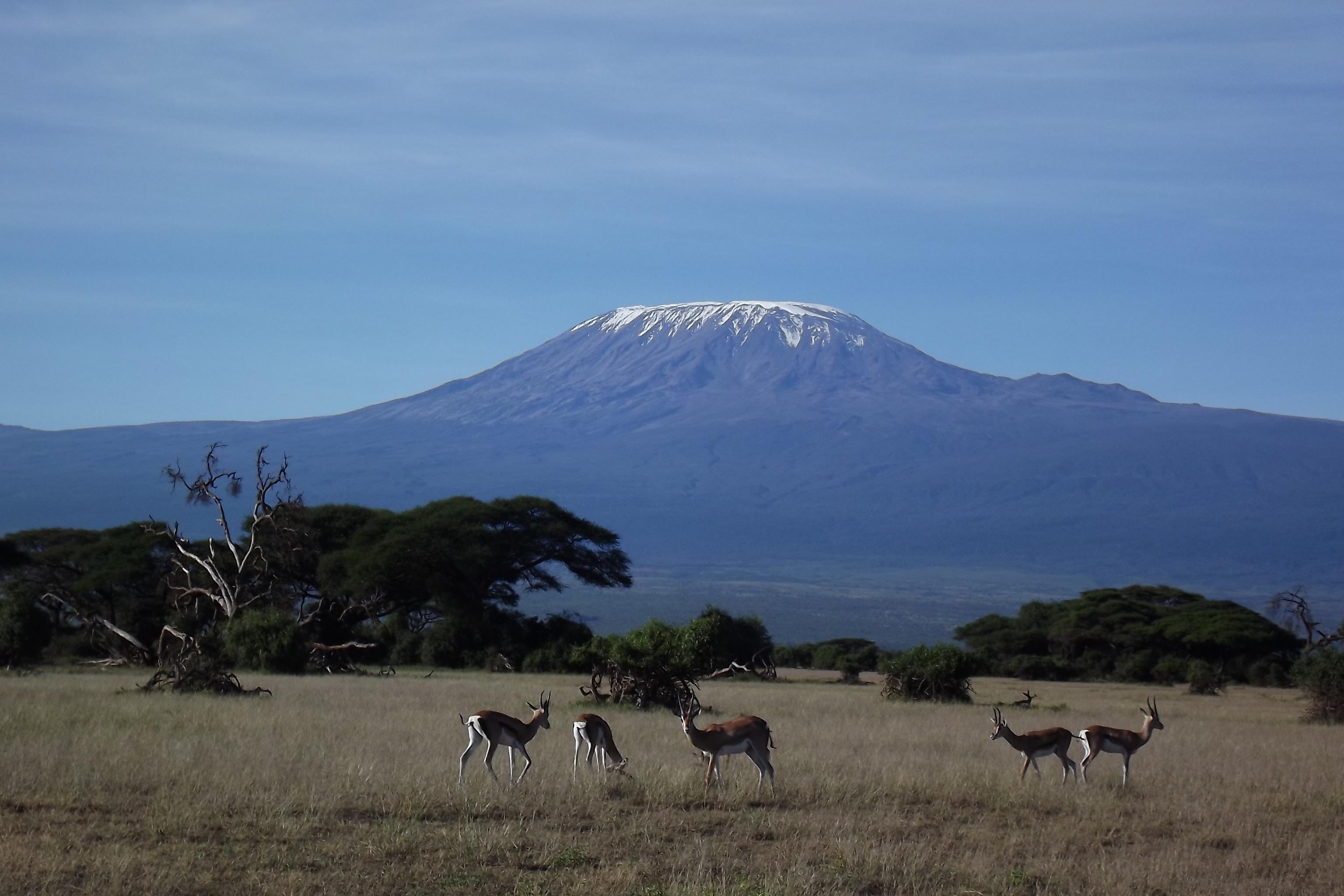 View of Kilimanjaro Amboseli National Park