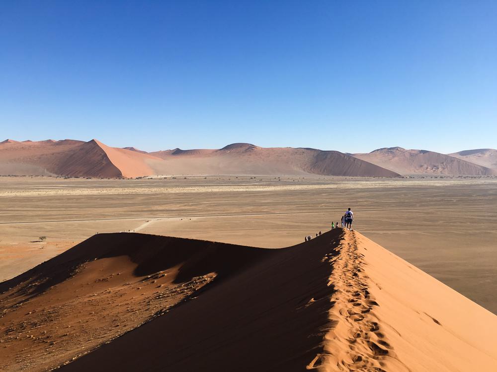 Dune 45 Namib Desert