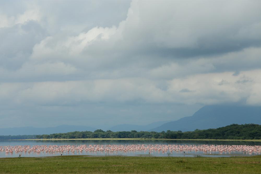 View of Lake Manyara