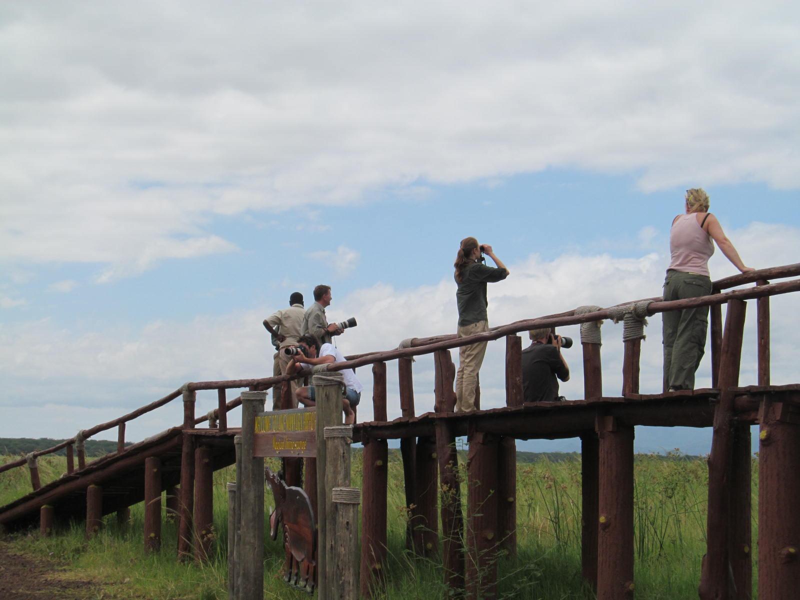 Hippo Pool at Lake Manyara National Park