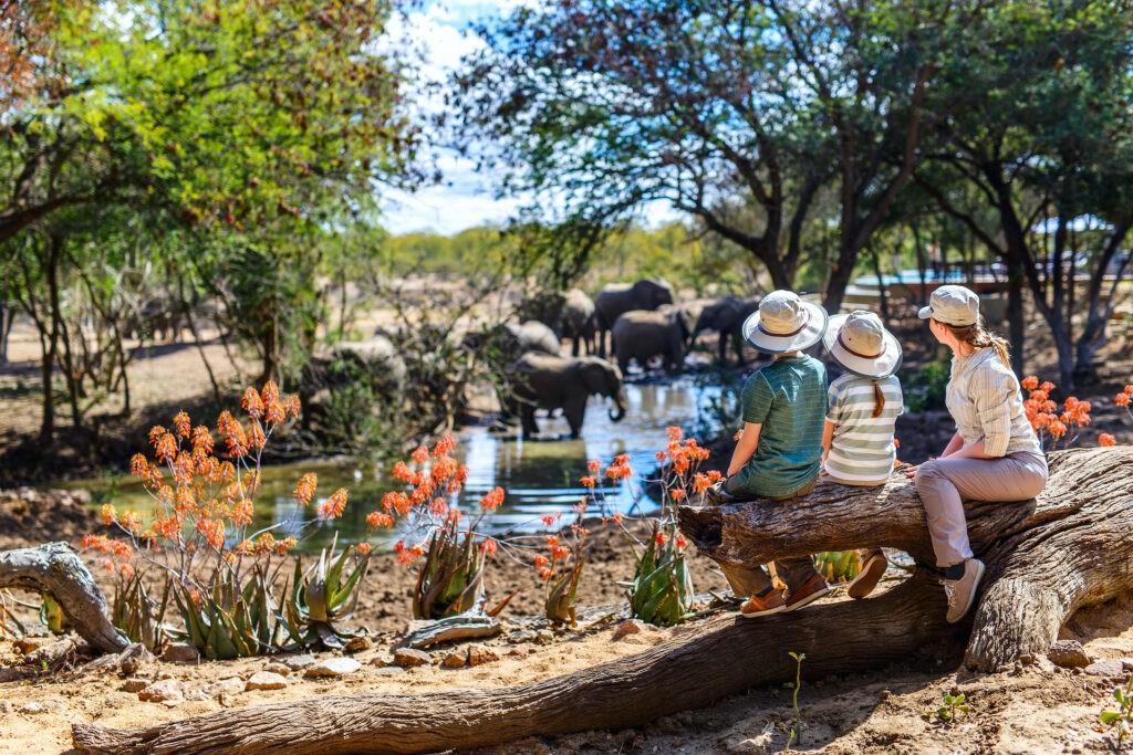 family safari holidays